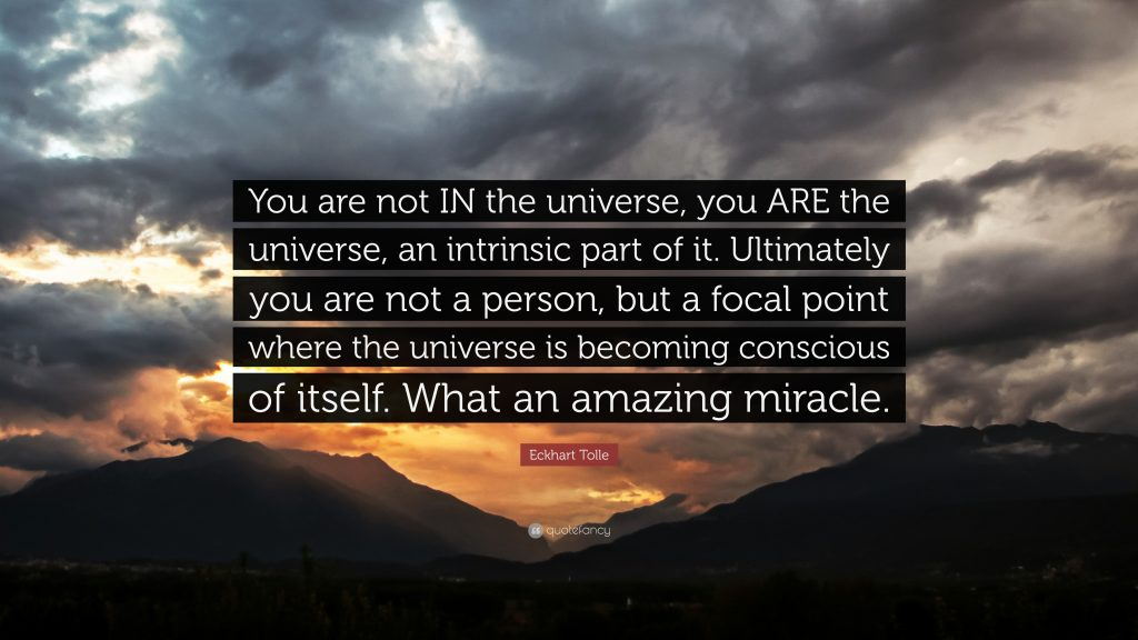 1741407-Eckhart-Tolle-Quote-You-are-not-IN-the-universe-you-ARE-the
