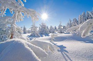 snow-winter